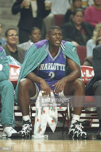 Forward Larry Johnson of the Charlotte Hornets looks on during a game against the Chicago Bulls at the United Center in Chicago Illinois The Bulls...