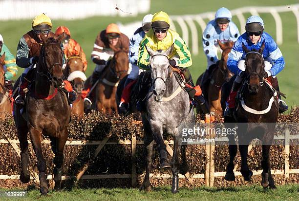 Shane Kelly and Lady Rebecca clear the 4TH Hurdle at Cheltenham before going on to win The Stakis Casinos Handicap Hurdle Race Mandatory Credit...