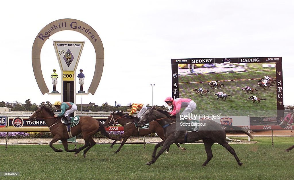 Pixel #4 ridden by Chris Munce wins the Furniture Warehouse Handicap race #6 held at Rosehill Racecouse in Sydney, Australia. DIGITAL IMAGE. Mandatory Credit: Scott Barbour/ALLSPORT