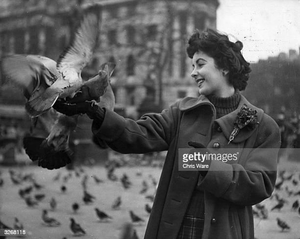 British born leading lady Elizabeth Taylor feeds the pigeons in Trafalgar Square London