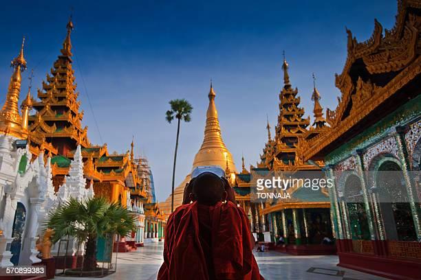 A novice and  Shwedagon Pagoda