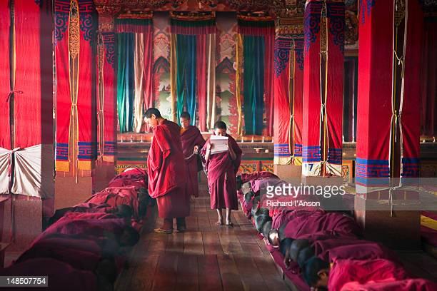 Novice monks at morning prayers in main assembly hall of Tawang Monastery.