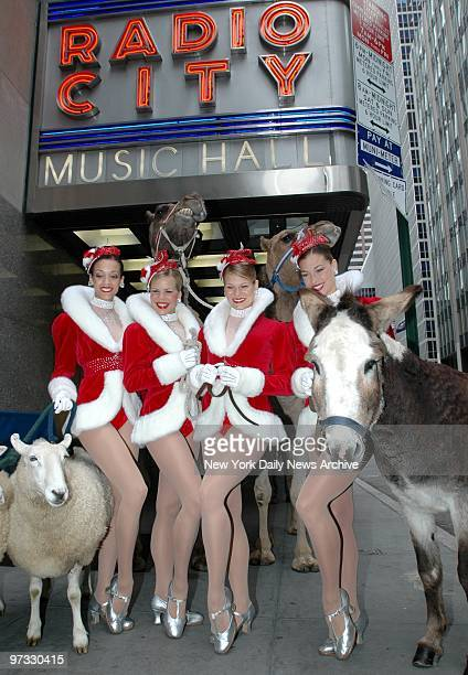 Now playing outside the Radio City Music Hall Rockettes Melanie Allen Melissa Rouse Amanda Suchy Melissa Hillmer an unnamed sheep and a donkey give a...