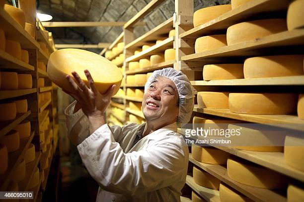 Nozomu Miyajima observes the maturation of raclette cheese at Kyodo Gakusha Shintoku Farm on October 20 2014 in Shintoku Hokkaido Japan