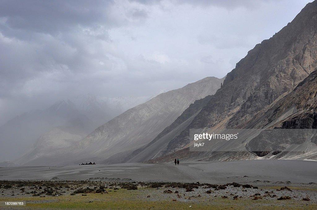 Nubra Valley Desert, Ladakh, India