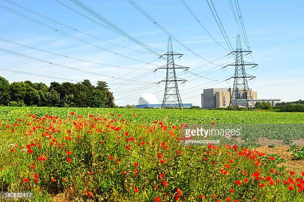 Nuclear power lines