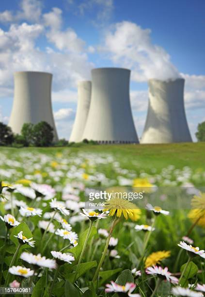 Nuclear Power Plant and Flowering Meadow