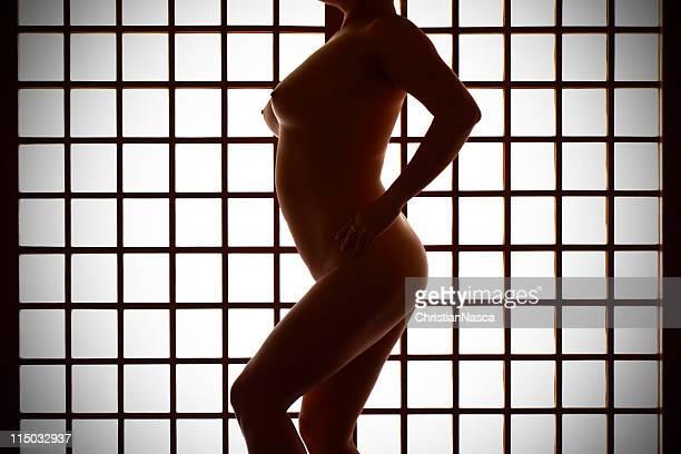 Nude davanti in stile giapponese carta Separè (Porta di carta giapponese