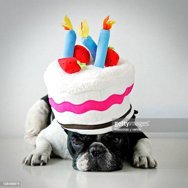 Nuka's birthday