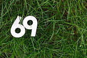 Picture of a Number 69 on a green grass background