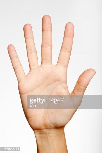 Number Five (XXXL)