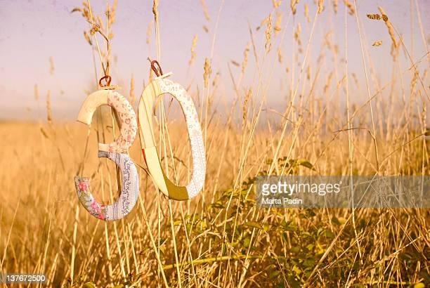 Number hanging in field, Spain