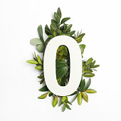 Number zero shape with green leaves. Nature concept. Flat lay.