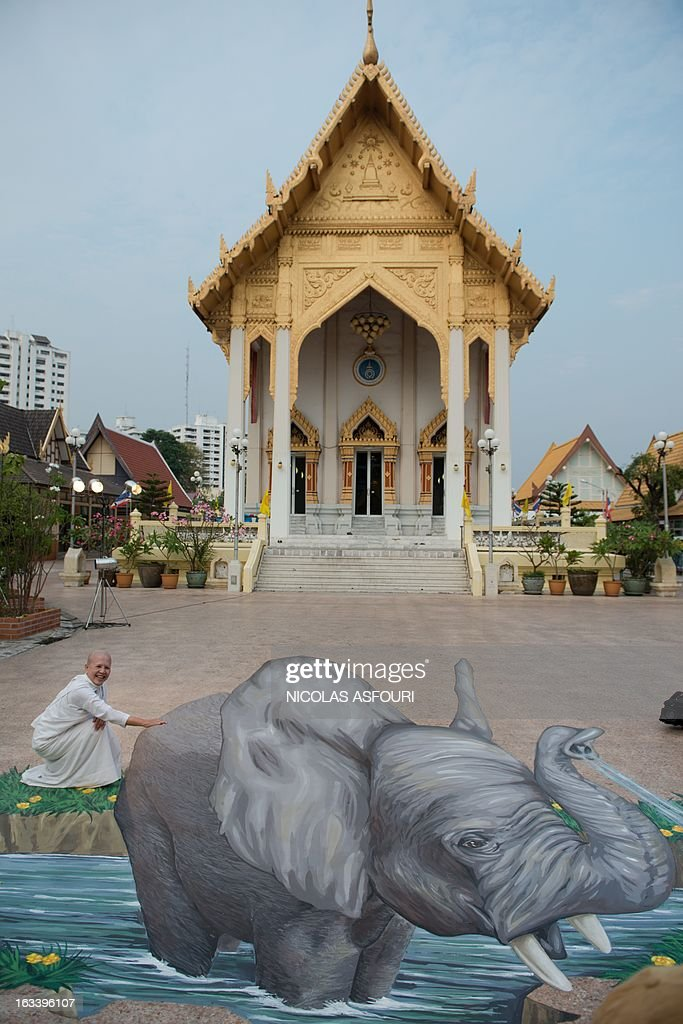 A nun stands to a chalk drawing of an elephant designed by artist Remko van Schaik at the Wat That Thong temple in Bangkok on March 9, 2013. Conservationists have urged Internet giant Google to remove thousands of advertisements promoting products made from endangered whales and elephants. Campaign group The Environmental Investigation Agency said on March 5 that it had written to Google CEO Larry Page last month appealing for the removal of more than 1,400 ads promoting whale products and 10,000 ads for elephant ivory products on its Japanese shopping site. AFP PHOTO/ Nicolas ASFOURI