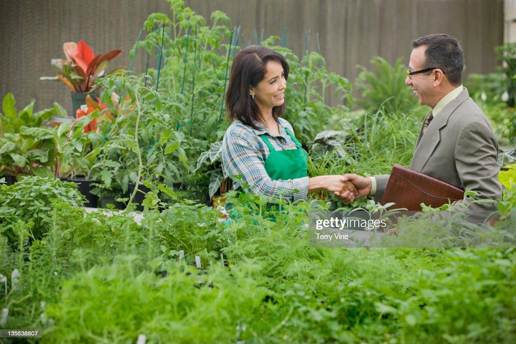 Nursery owner greeting salesman : Stock Photo
