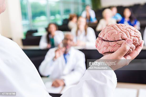 Nursing or medical professor teaching about human brain