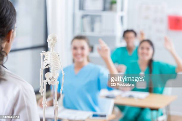 Nursing students raise their hands during anatomy class