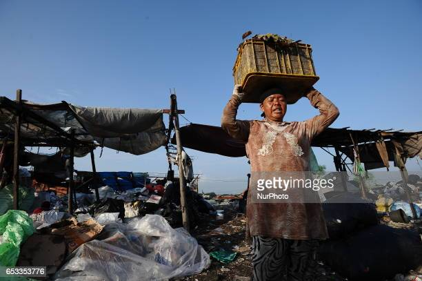 Nurtinah lifts the garbage to sort Nurtinah a farm worker from Pucang Anom village Cerme subdistrict Bondowoso district East Java Province Indonesia...