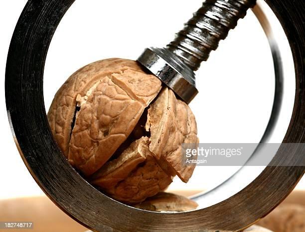 Nut cracker and walnut