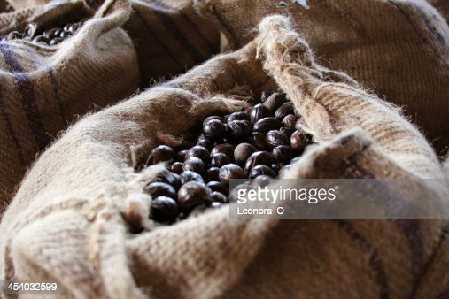 Nutmeg seeds in storage sack, Grenada : Stock Photo
