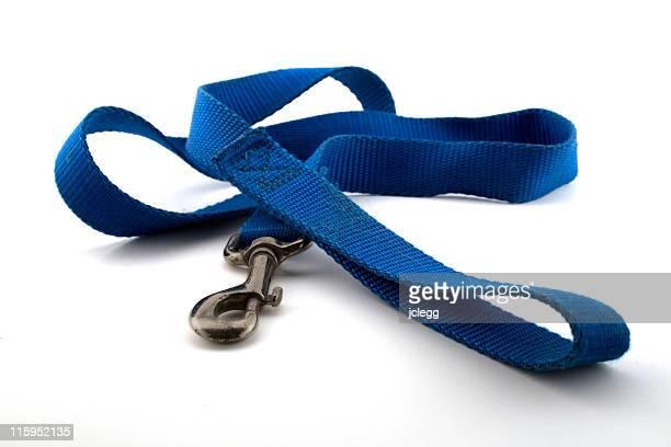 Nylon Dog Leash