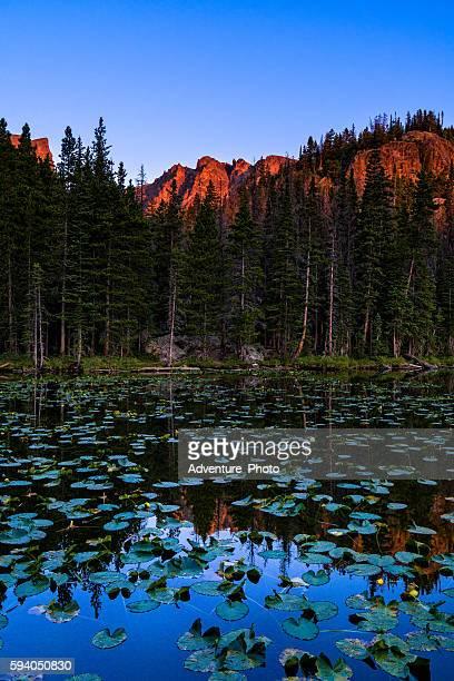 Nymph Lake Reflections of Hallett Peak