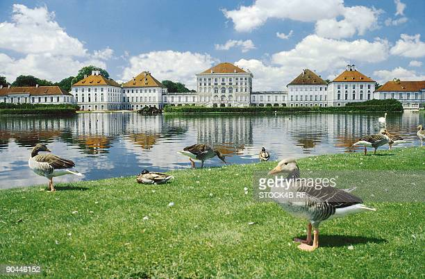 Nymphenburg Palace with ducks, Munich, Bavaria, Germany