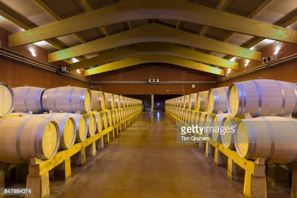 Oak casks of red Villacreces wine in storage Ribera del Duero wine production by River Duero Navarro Spain