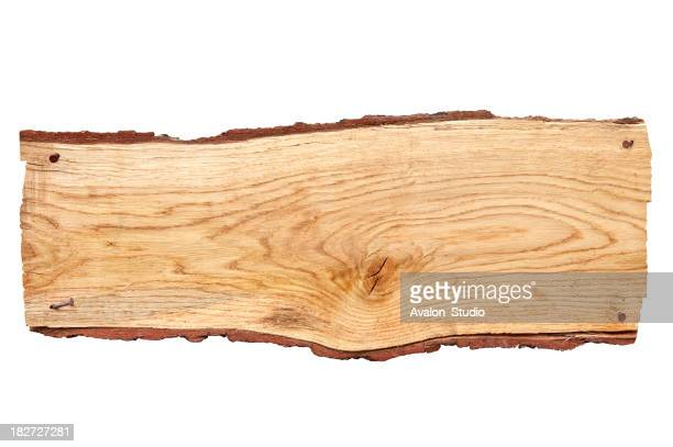 Oak plank of bark on a white background