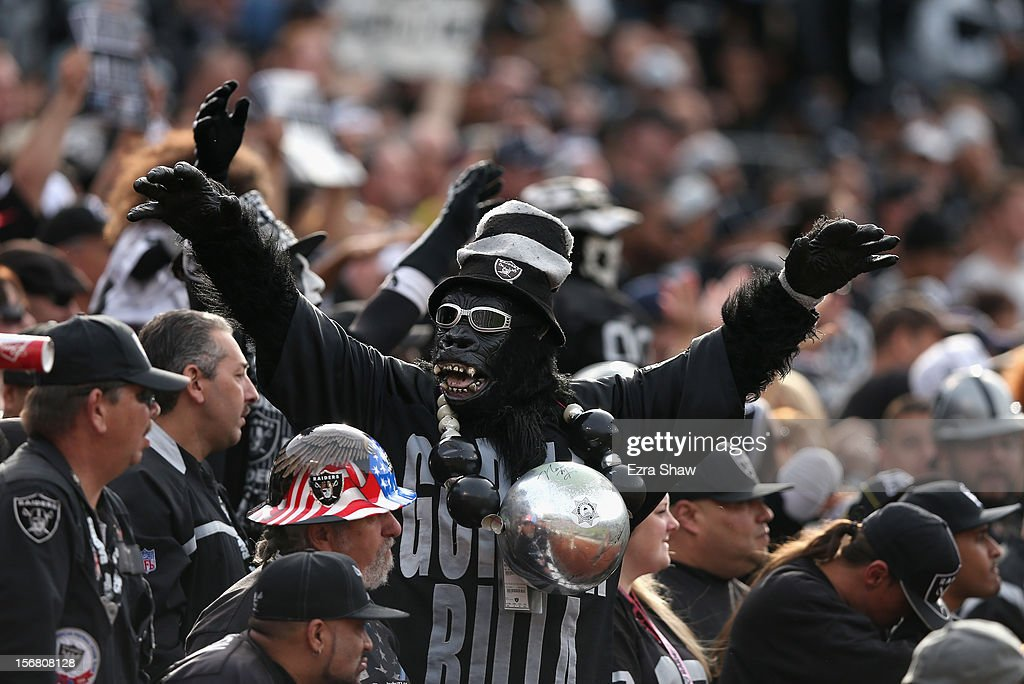 A Oakland Raiders fan dressed as a gorilla cheers on his team during their game against the New Orleans Saints at O.co Coliseum on November 18, 2012 in Oakland, California.