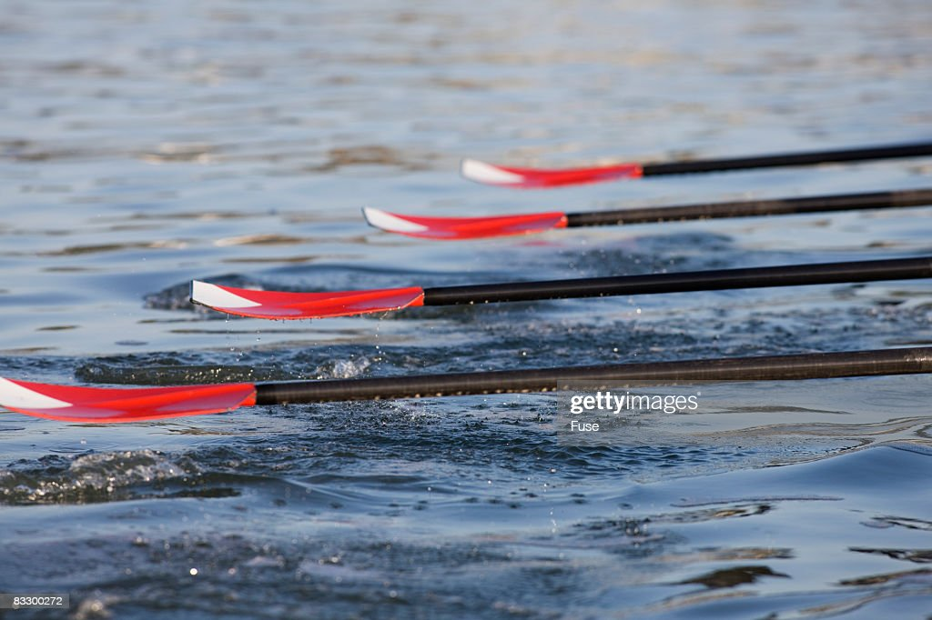 Oars of a Crew Team