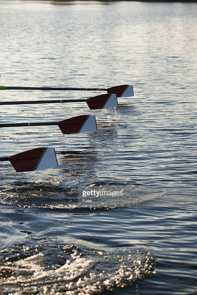 Oars of Rowing Crew