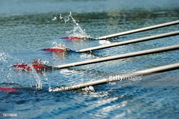 Oars of Rowing Crew