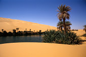 Oasis in Libyan desert (used polarizing filter)