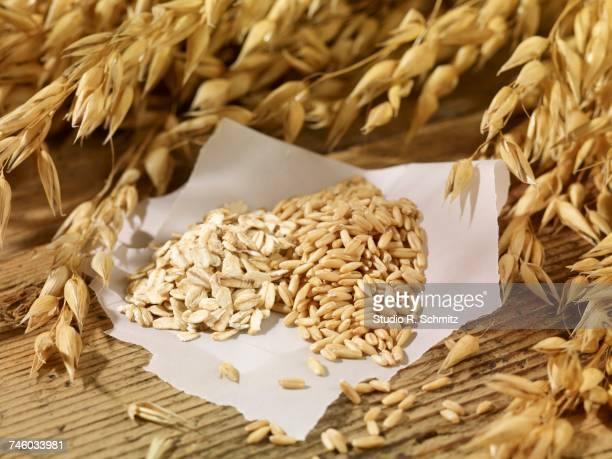 Oat seeds, oats and ears of oats on a wooden surface
