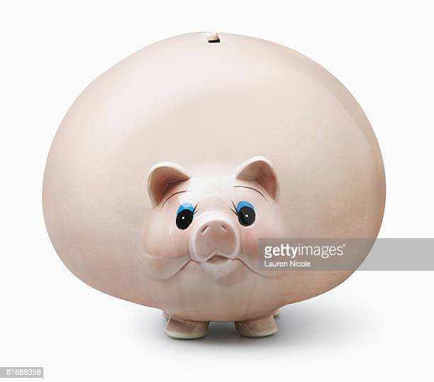 Obese Piggy Bank
