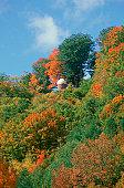 Observatory at Hildene w/ fall leaves, Manchester, VT