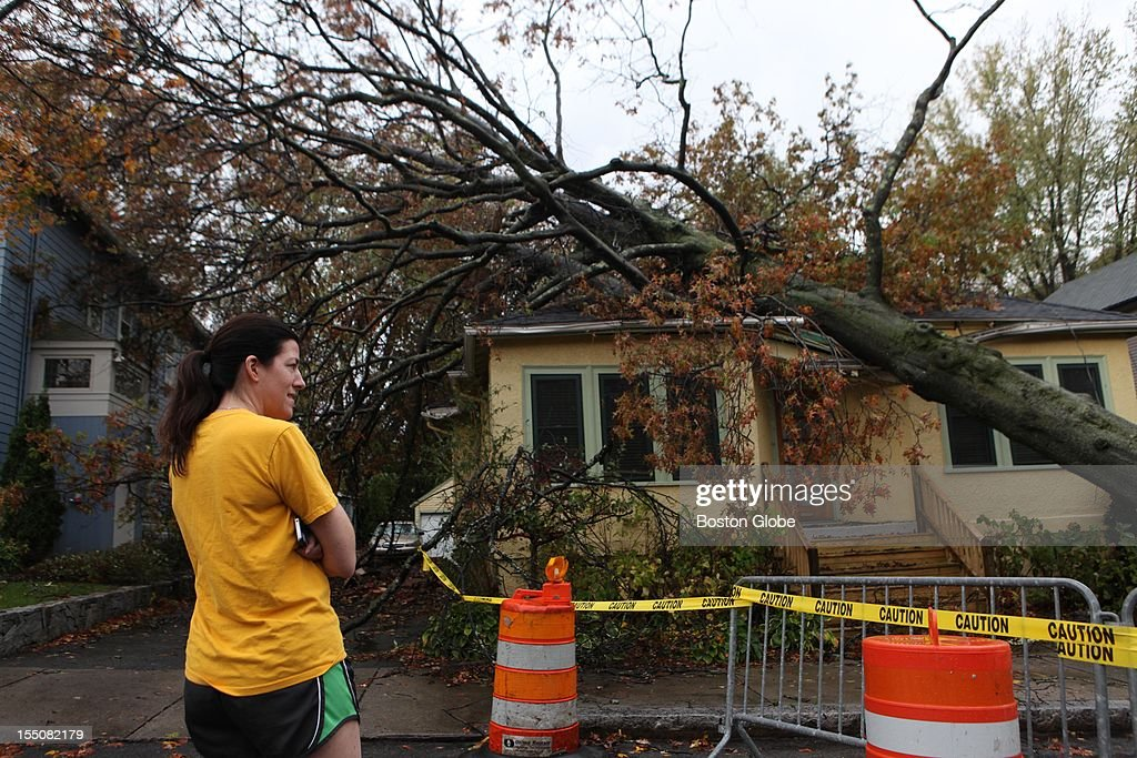 Occupant Jenny Brennan stood by, where a tree collapsed part of the roof of her home on Larch Road during Hurricane Sandy yesterday, in Cambridge, Tuesday, October 30, 2012.