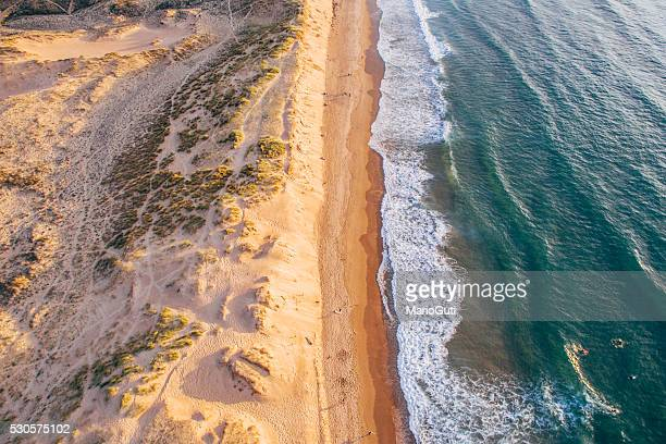 Ocean and dunes