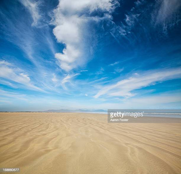 Ocean Beach 2