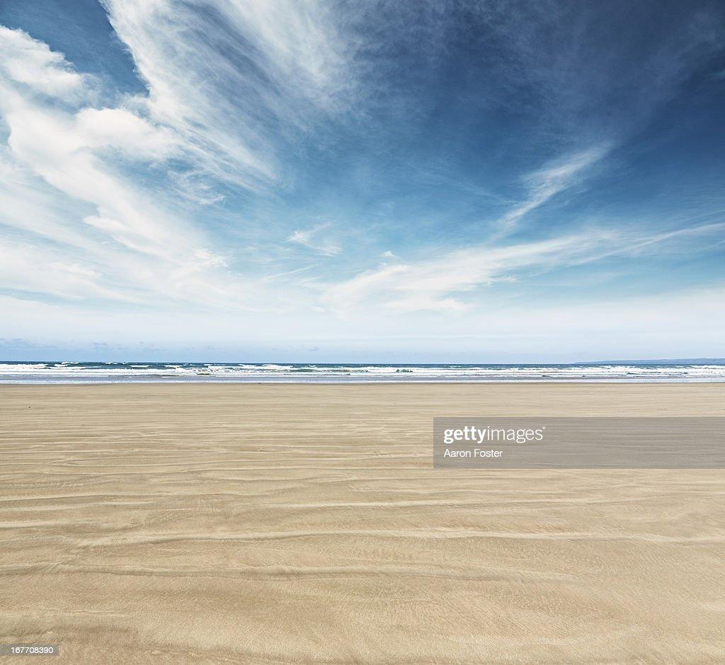 Ocean Beach : Stock Photo