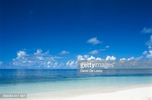 Ocean : Stock Photo