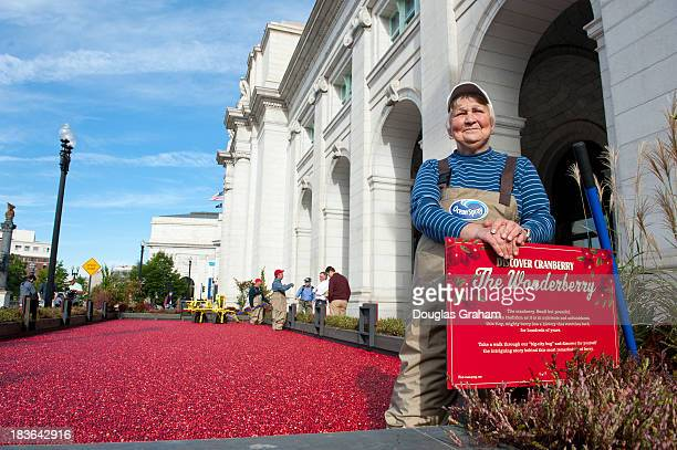 Ocean Spray built a 2000pound 'cranberry bog' to show how the fruit is harvested and for growerowners to share 'the taste health and heritage of this...