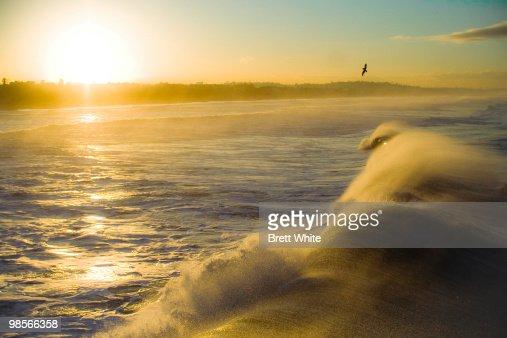 Ocean Sunrise : Stock Photo