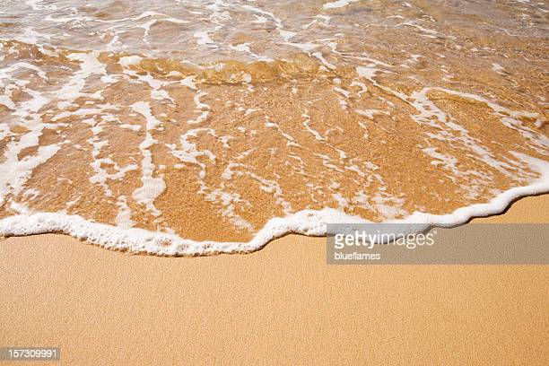 ocean surf   XXL
