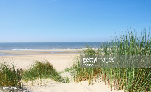 Ocean View from Sand Dunes with Grass