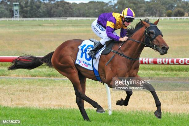 Ocean's Fourteen ridden by Linda Meech wins the Weirs IGA Donald Maiden Plate at Donald Racecourse on October 13 2017 in Donald Australia