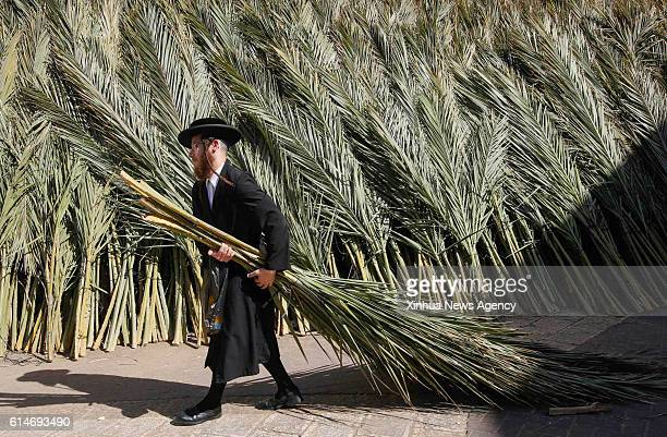 JERUSALEM Oct 13 2016 An UltraOrthodox Jew carries palmtree branches for building Sukkahs for the upcoming Sukkot Festival at a special market in a...