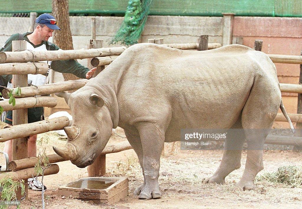 Steve Waugh of Australia, meets a young rhino at Chipangali Wildlife Sanctuary, just outside Bulawayo, Zimbabwe. Mandatory Credit: Hamish Blair/ALLSPORT