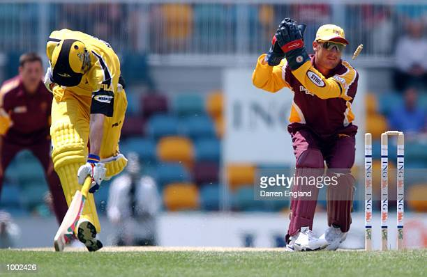 Mike Hussey of Western Australia just survives being run out by Wade Seccombe of Queensland during the ING Cup cricket match between Queensland and...